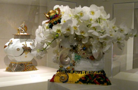 Orchids, teapots and shells