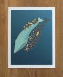 Shrimp Shadow, by Erica Sirotich