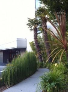 The super-hip Dream Inn in Santa Cruz!
