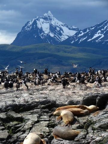 Tierra del Fuego - My home for 37 days