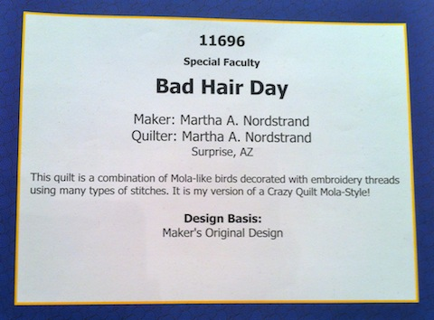 Description of Bad Hair Day, by Martha A Nordstrand